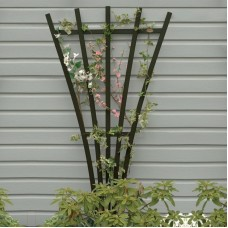 AD-TREL1-ACE Weathered Acorn Recycled Plastic Lawn & Garden Outdoor Traditional Furniture Hartford Fan Trellis Stand-Made in USA